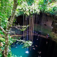 Ein Eintauchen in den Cenote
