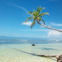 Kleine Fußabdrücke an einem Strand weiß wie Talkumpuder