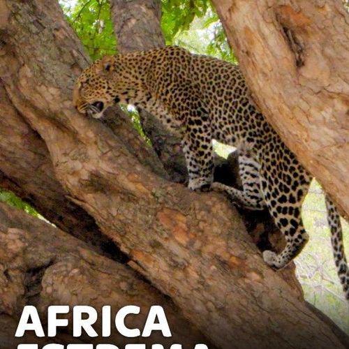 Africa estrema s1e5