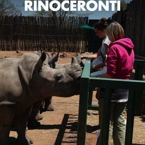 L'oasi dei rinoceronti