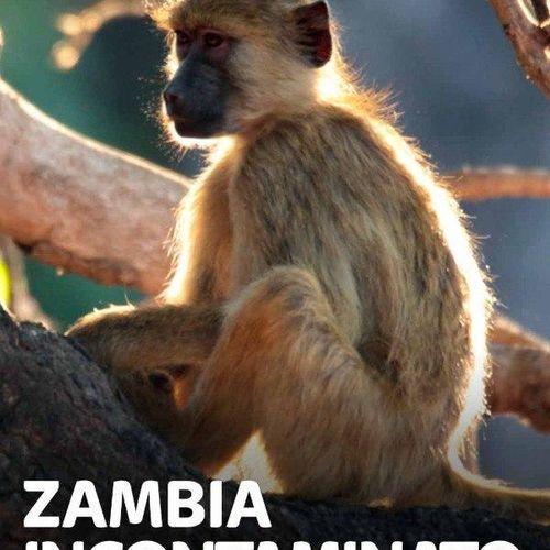 Zambia incontaminato s1e2