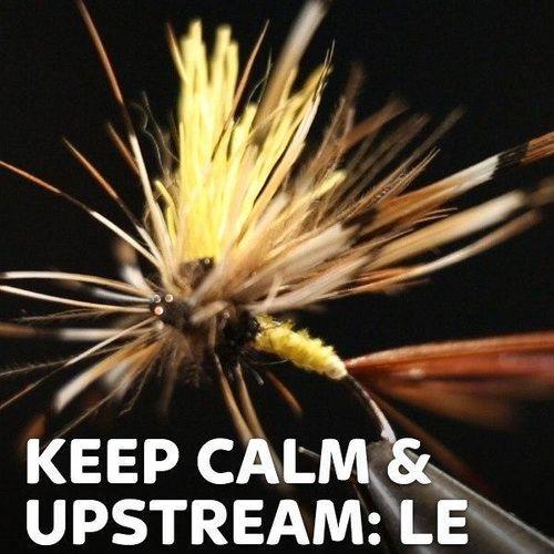 Keep calm & upstream: le indispensabili s1e5