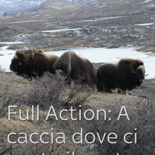 Full action: a caccia dove ci porta il vento s5e5