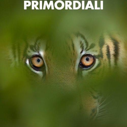 Istinti primordiali s1e6