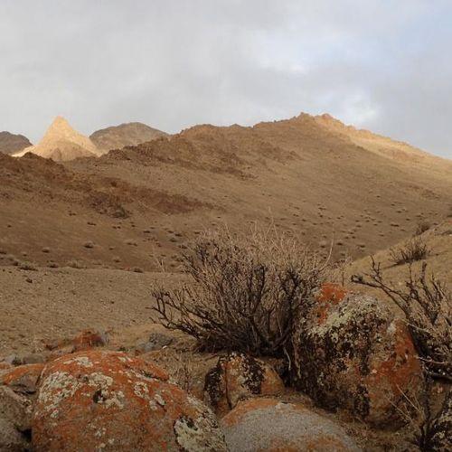 Meraviglie d'oriente: wild mongolia s1e2