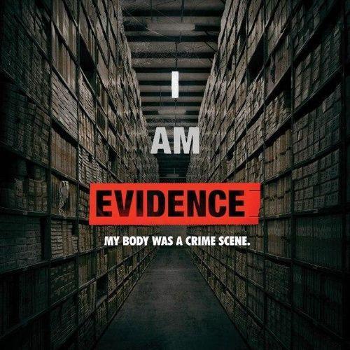 Io sono la prova - nel labirinto della violenza
