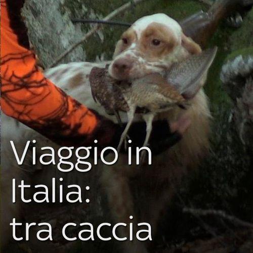 Viaggio in italia: tra caccia e tradizioni s1e4