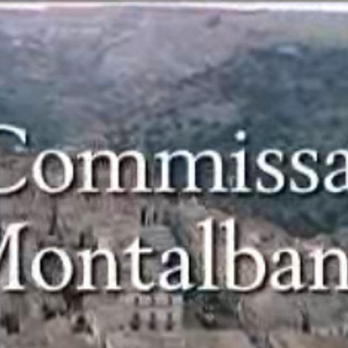 Il commissario montalbano - il sorriso di angelica